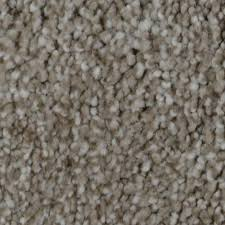 home decorators collection carpet sample wholehearted ii color