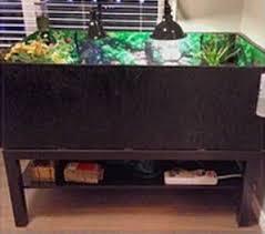 how to build a tortoise table diy coffee table tortoise table petdiys com