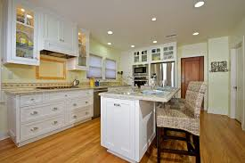 Kitchen Cabinets Repainted by Custom Contemporary Kitchen Cabinets Alder Wood Java Finish Shaker