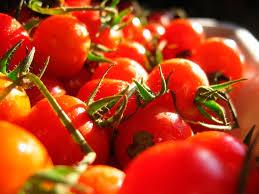 imagenes gratis de frutas y verduras imagen de tomate tomates fruta verdura rojo ingrediente foto