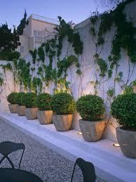 creating a patio container garden design hgtv