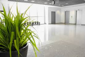 best office plants archives plant interscapes indoor office plants