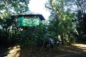 chambre dans les arbres chambre dans les arbres picture of posada andrea cristina