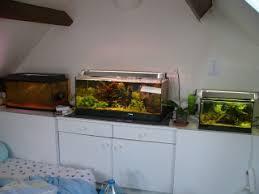 chambre aquarium aquarium et chambre à coucher