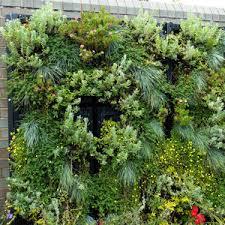 Vertical Garden Trellis - vertical gardening