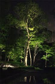 tree lighting indianapolis contemporary tree