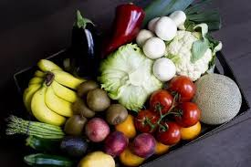 fruit delivery company i am about to start fruits and vegetables home delivery company in