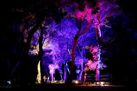 enchanted forest of light tickets descanso gardens on twitter enchanted forest of light tickets