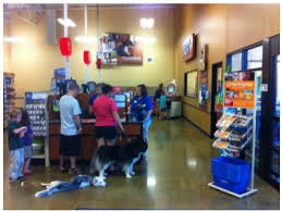 petsmart open for business in epps bridge centre athens ga patch