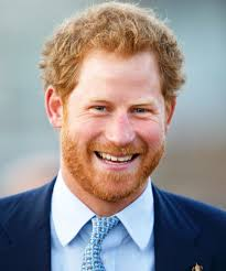 Prince Harry by Prince Harry Makes Friend With A Dog In Orlando Instyle Com
