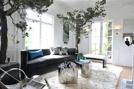 best living room plants ideas on apartment for designer rooms