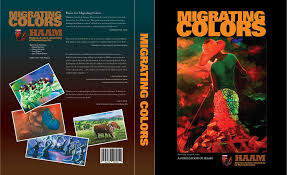 Massachusetts travel noire images Haitian artists assembly of massachusetts home facebook