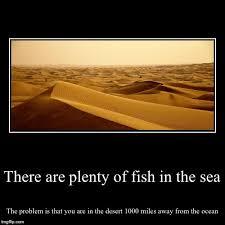 Fish In The Sea Meme - there s plenty more fish in the sea meme best fish 2017