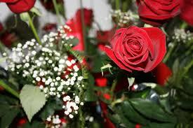 imagenes para enamorar con flores flores para enamorar haz que tu pareja caiga rendida a tus pies