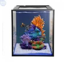 Aquascape Reef Nuvo Fusion 10 Gallon Saltwater Aquarium Kit With Skkye Led Bulk