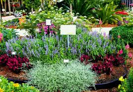 small flower bed ideas best flower bed ideas decorations and designs for livingroom