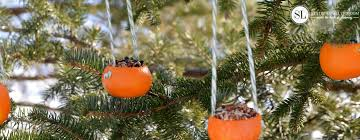 orange birdseed ornaments homemade citrus bird feeders