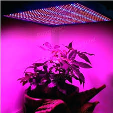 plant grow lights lowes plant grow lights lowes amazing growing lights for plants for home