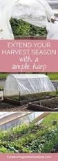 111 best winter vegetable garden images on pinterest winter
