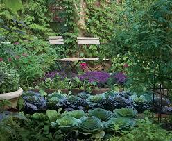 Creative Vegetable Gardens by 48 Best Vegetable Gardens Images On Pinterest Veggie Gardens