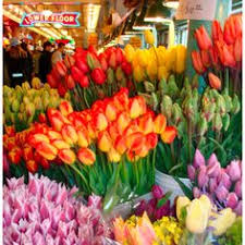 seattle flowers seattle flower stand at pike place market dungeness crabs