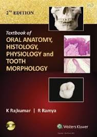 Wheeler S Dental Anatomy Physiology And Occlusion Textbook Of Oral Anatomy Histology Physiology And Tooth