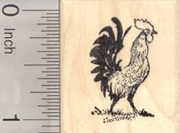 small chicken amazon com rooster rubber stamp aka cockerel or male