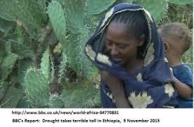 Starving Child Meme - famine and the ethiopia rising meme oromianeconomist