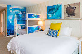 themed rooms winter the dolphin themed rooms clearwater marine aquarium