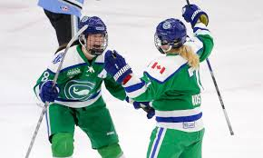 connecticut girls hockey league inc