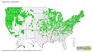 Edd Maps Horsedvm Toxic Plants For Horses St John U0027s Wort