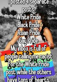Gay Pride Meme - i posted 4 separate posts white pride black pride asian pride gay