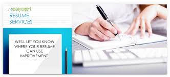 Get Your Resume Reviewed Resume Review Special The Essay Expert