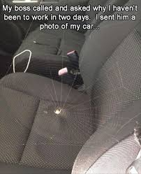 Funny Spiders Memes Of 2017 - 18009 best makes me smile images on pinterest funny stuff ha ha