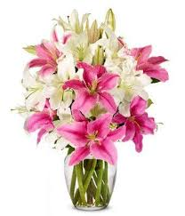 Birthday Flowers Delivery Best 25 Send Flowers Internationally Ideas On Pinterest Ivory