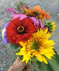 Monthly Flower Delivery Grand Junction Flower Delivery