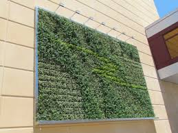 Pictures On Walls by Living Green Walls The Wallpaper Of The Future Is Alive