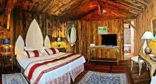 chambre dans un arbre les maisons en bois prennent de la hauteur en vendée