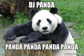 dj panda panda panda panda panda confession panda make a meme