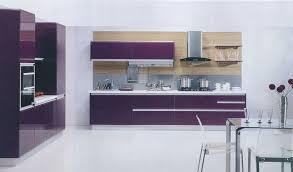 modern timber kitchen designs purple and white kitchen design modern purple kitchen design