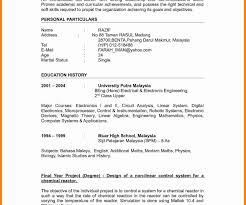 resume format lecturer engineering college pdfs lecturere sle of college ixiplay free sles professor doc
