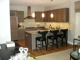 apartments in chicago for rent luxury apartment kitchen apt for