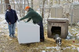 Extra Large Dog Igloo House Dog Outreach All Species Kinship