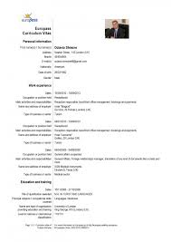 Resume In English Sample by European Resume For Hospitality And Tourism Administration Job 2