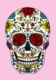 colorful skull search skull colorful