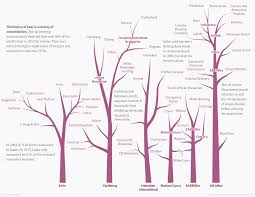 the genealogical world of phylogenetic networks october 2014