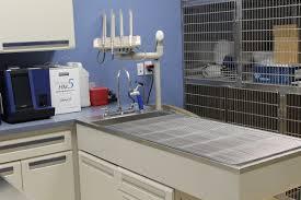 gallery faith veterinary clinic services llc