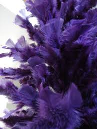 purple feather purple feather tree