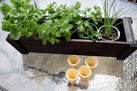 Diy Herb Garden Box by Diy Deck Organic Herb Garden Teachable Mommy