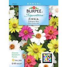 flower seed packets shop burpee zinnia flower seed packet at lowes